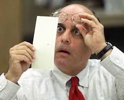 vote inspector